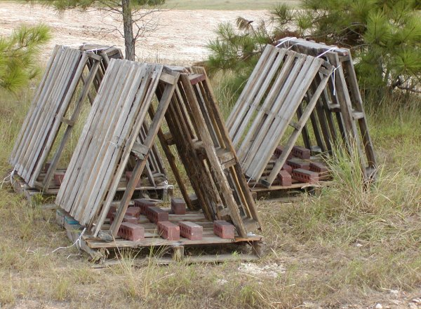 Wood pallets for fish habitat structurespot for Pvc fish attractors